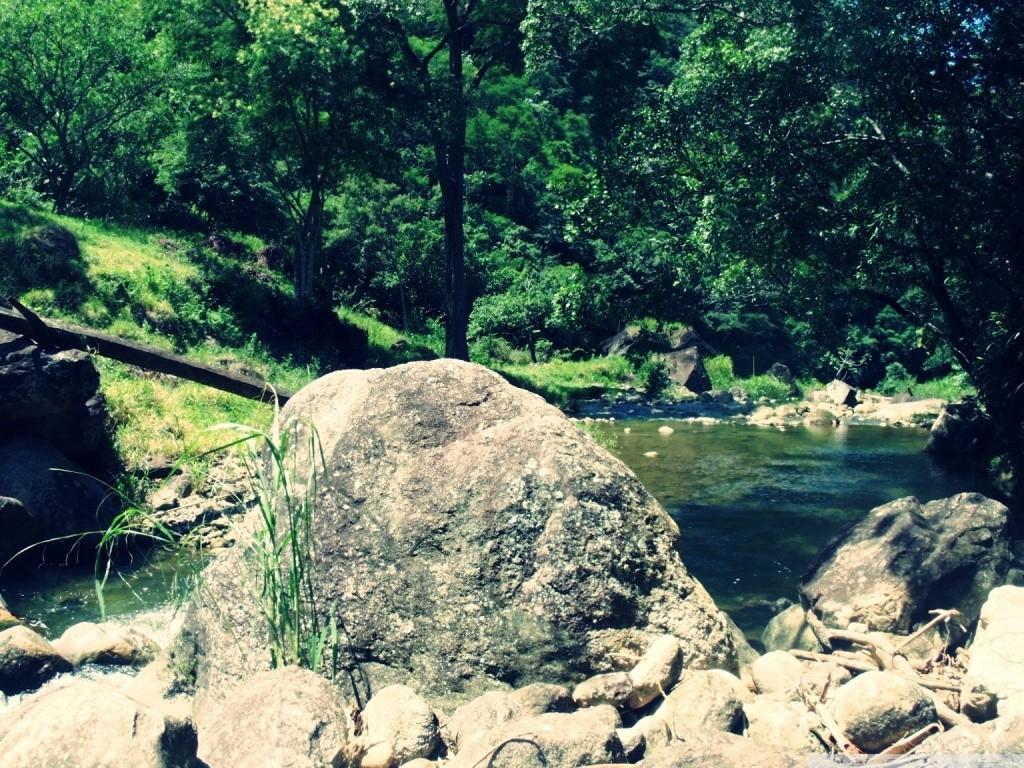 عکس های طبیعت با کیفیت HD